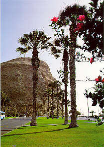 Historic Morro de Arica in the north